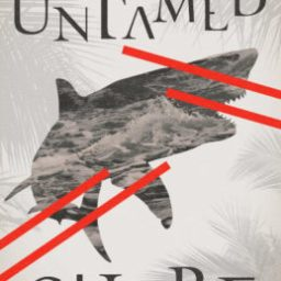 REVIEW: Untamed Shore by Silvia Moreno-Garcia